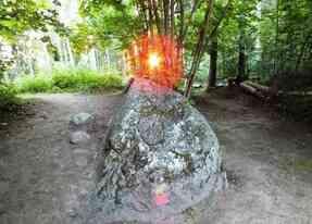 La forêt de Pokaini, une énergie très forte !
