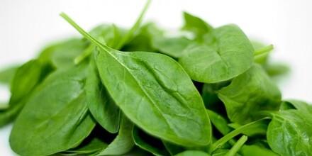 Spinach[1]