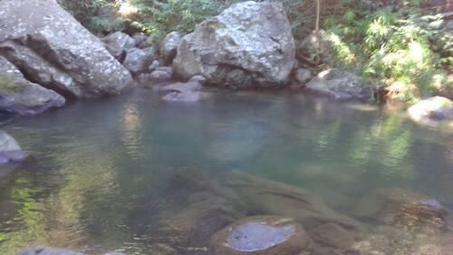 La Ravine Goyaves (RANDONNÉE)