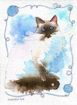 """Echange atc """"chats chez Sandrine : le numéro 7."""