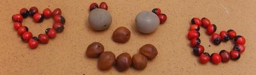 Boucles d'oreilles réalisées avec des graines