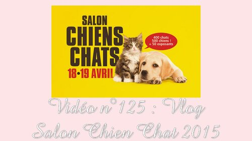 Vlog | Salon Chien Chat - Avril 2015