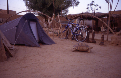 La Mauritanie 55 ° à l'ombre mais il n'y a jamais d'ombre !