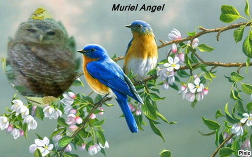 copiry-Muriel-Angel-Creations--2--copiry.JPG