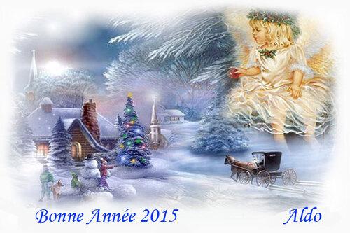 PPS Bonne année 2015