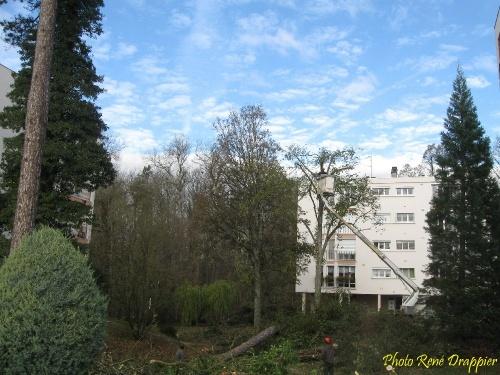 """Châtillon sur Seine, ville dans un parc : l'exemple des résidences """"le Trianon"""" rue de la Feuillée..."""