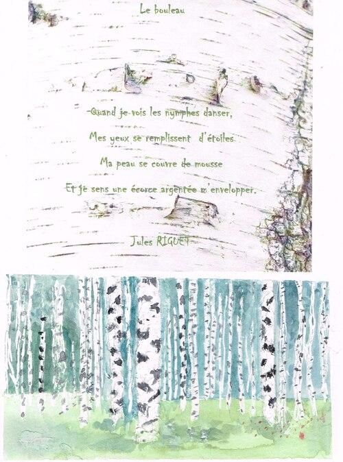 Le bouleau (poème de Jules)