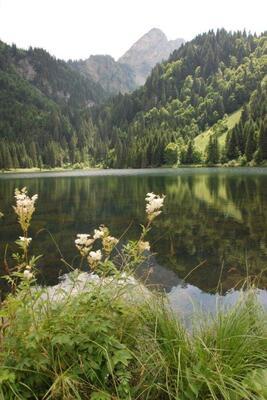 Le lac sous un autre angle