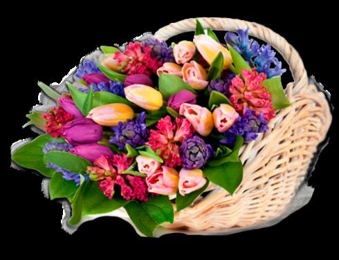 Paniers fleuris 2