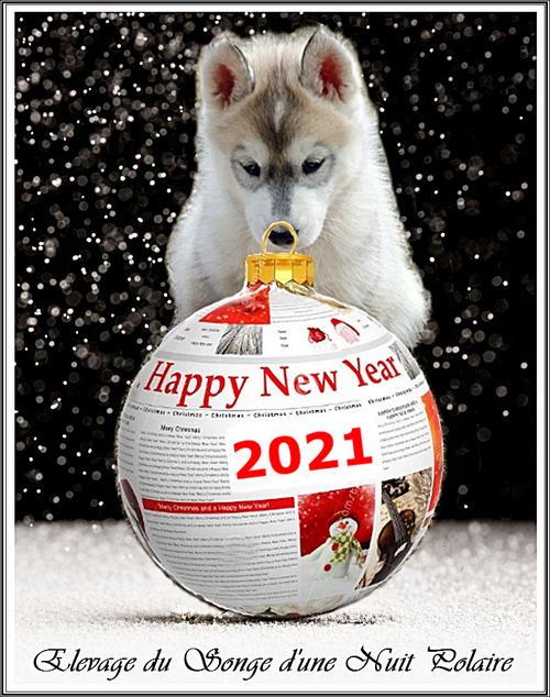 Bonne année 2021 ?