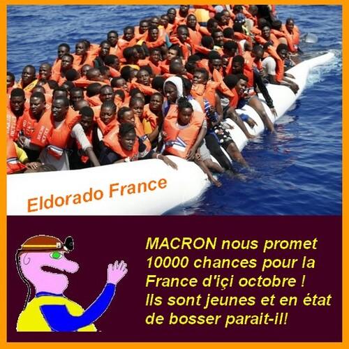 Les rescapés et les chances pour la France aux infos du poissonnier.
