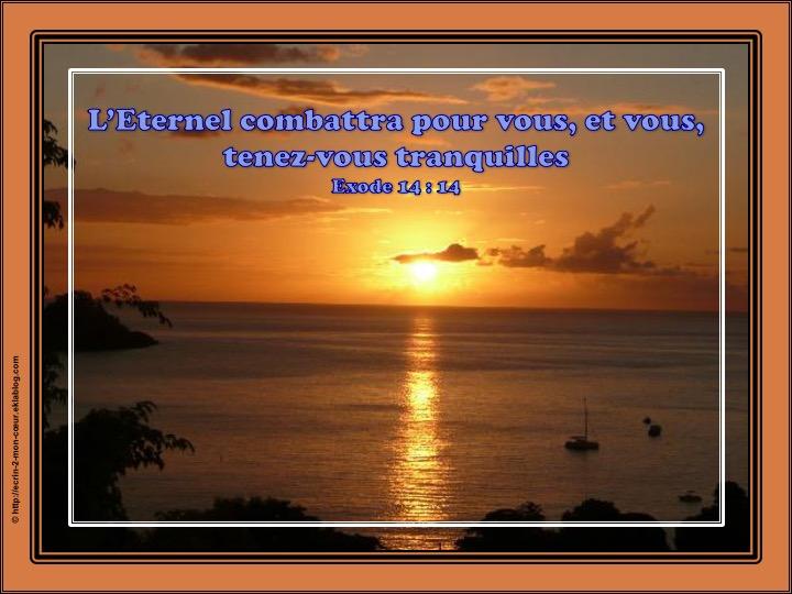 L'Eternel combattra pour vous - Exode 14 : 14