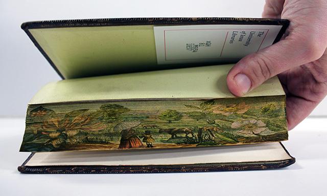 peinture tranche livre 05 Des peintures cachées dans la tranche des livres ( 1650   1900 )  peinture 2 information histoire bonus art