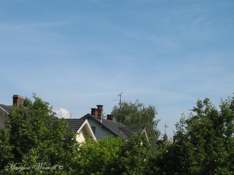 Ciel d'Alsace 273