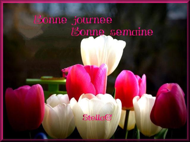 bsemaine pr mon blog 22-05-2017