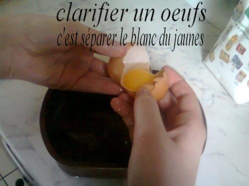bûche fagot(chocolat,vanille et son coulit de franboise)