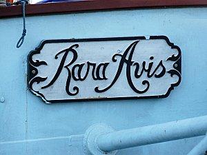 08-08-10 RARA AVIS 005
