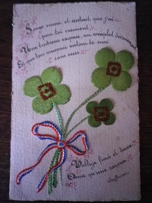 Les trèfles de la St Patrick