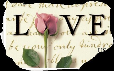 Je vous souhaite une bonne saint valentin