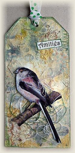 Tags oiseaux