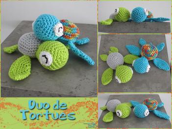 Un duo de tortues