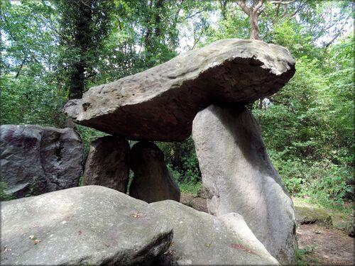 Photo et histoire du dolmen de Commequiers en Vendée