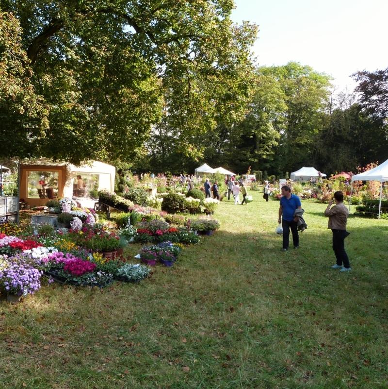 Pépinières et Plantes d'exception à Borest...le cru 2014 - une vue d'ensemble