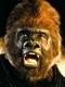michael clarke duncan Planete singes