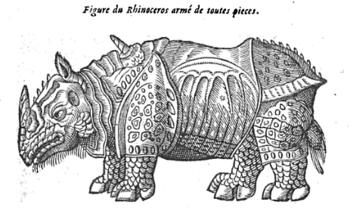 rhinocéros, ambroise paré, 1664