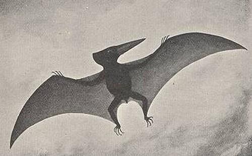 Un ptérodactyle vivant retrouvé en 1856 !