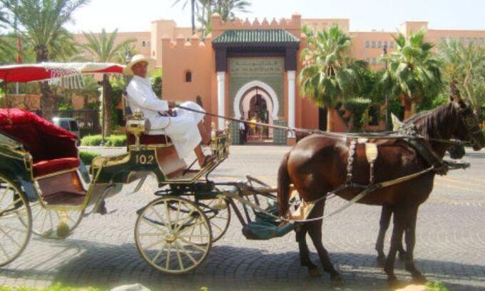 Week-End à Marrakech Asni Ouirgane Vallée de l Ourika