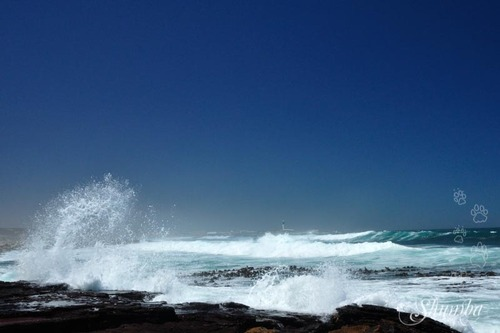 West Coast, Doring Baai section
