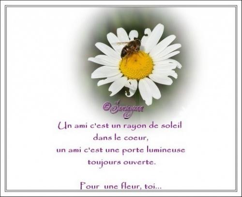 *Le Parfum