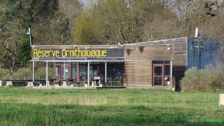 le Teich en Gironde (33)