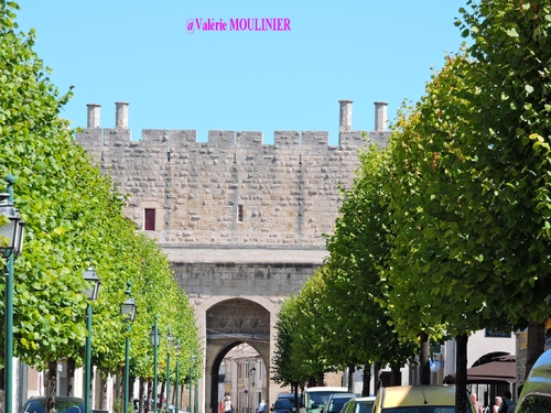 Aigues Mortes : mes photos