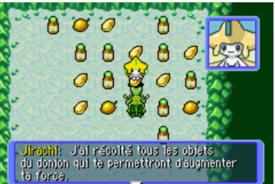 Jirachi grotte des voeux