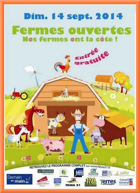Le G.A.E.C. de l'Epicéa à Puits: Denis, Nicolas et Arnaud Chauve, éleveurs de blondes d'Aquitaine et céréaliers