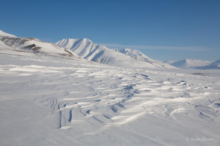 De l'autre côté du fjord