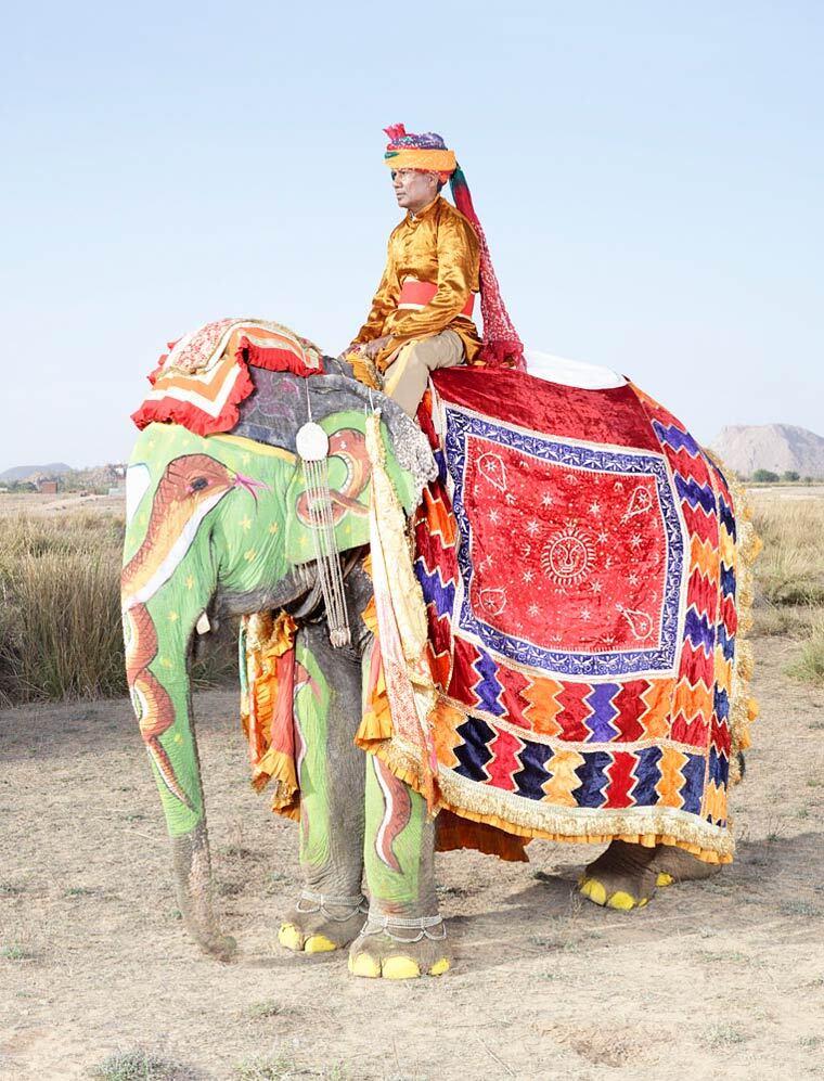 charles-freger-painted-elephants-14