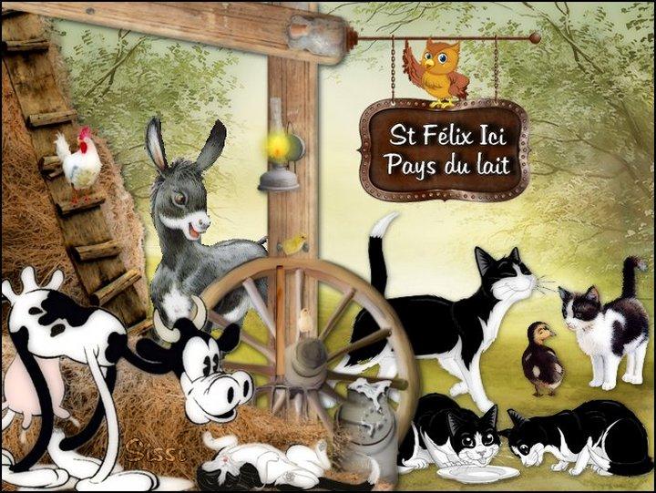 * St Felix le Chat *Atelier de Babouchka *