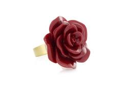 Rose en Fmo