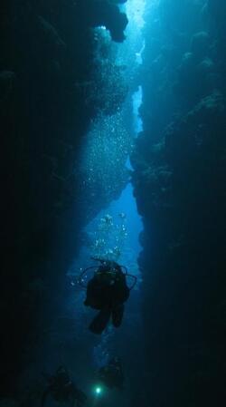Plongée à Hienghène