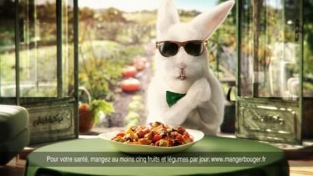 Des lapins dans la pub