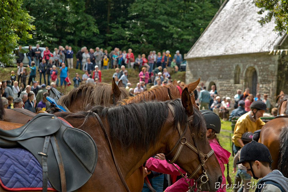 Bénédiction des chevaux quistinic