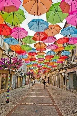 parapluies toutes les couleurs