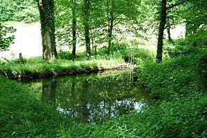 Lusigny-sur-Ouche - Le rouissoir - été
