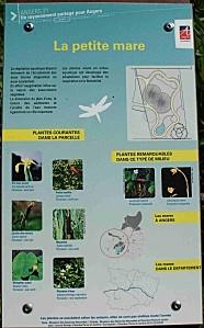 Biotopes0007