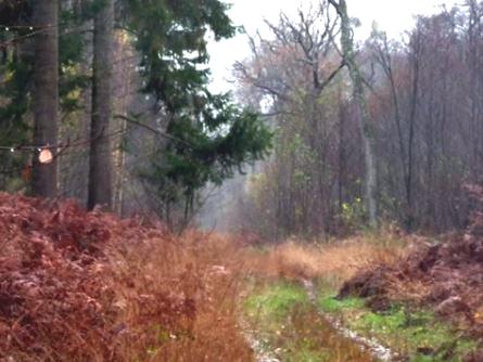 Dessin et peinture - vidéo 2052 : Les derniers paysages enneigés - peinture à l'huile.