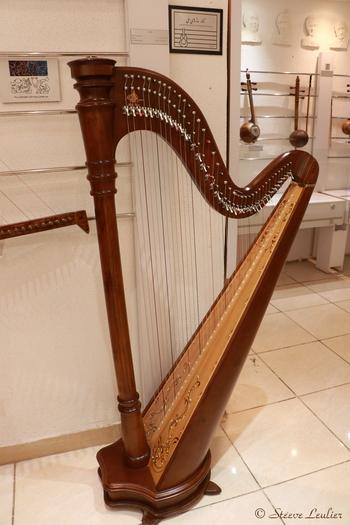 Musée de la musique, Ispahan, Chang Celtic
