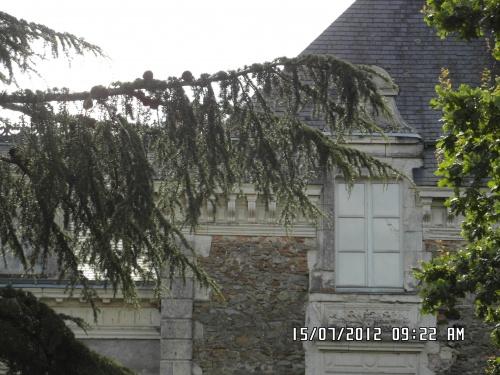 Près de Bouchevereau et son château